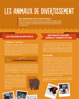 "Animaux de ""divertissement"""
