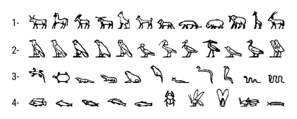 hiéroglyphes Pierre de Rosette