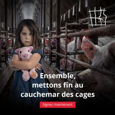 initiative citoyenne européenne contre les cages