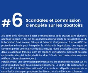 Scandales et commission d'enquête sur les abattoirs