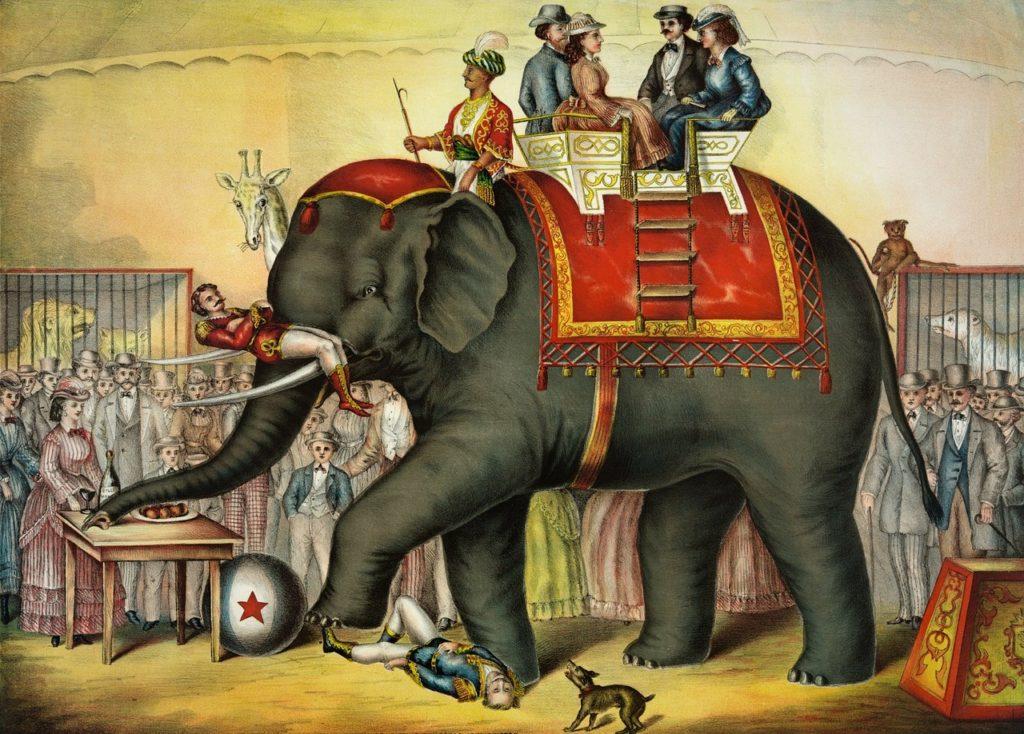 cirque ancien animal