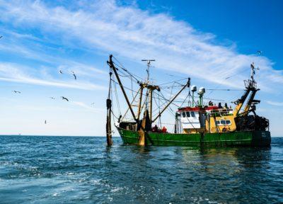 Pêche commerciale